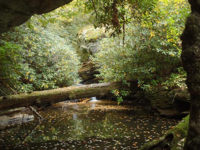 (<I></I>), Hanging Rock State Park, North Carolina, United States